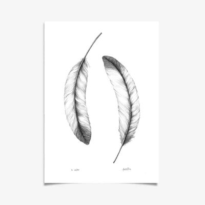 Feather Art Print by Haze Road