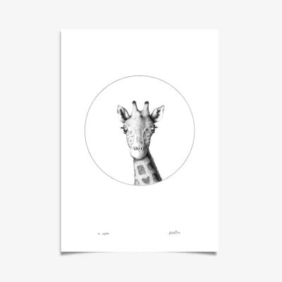 Giraffe Art Print by Haze Road