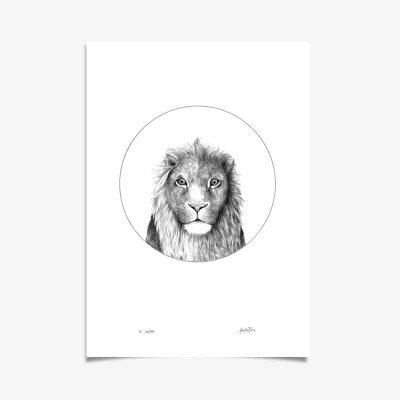 Lion Art Print by Haze Road