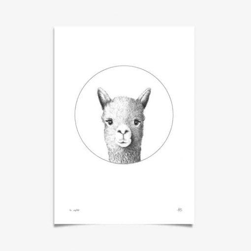 Llama Art Print Hand Drawn