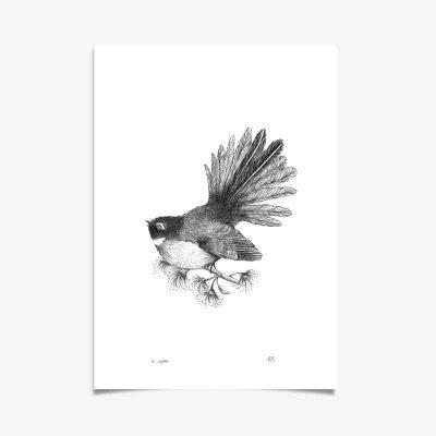Fantail Art Print